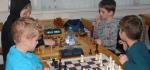 шахматы (41)