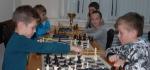 шахматы (56)