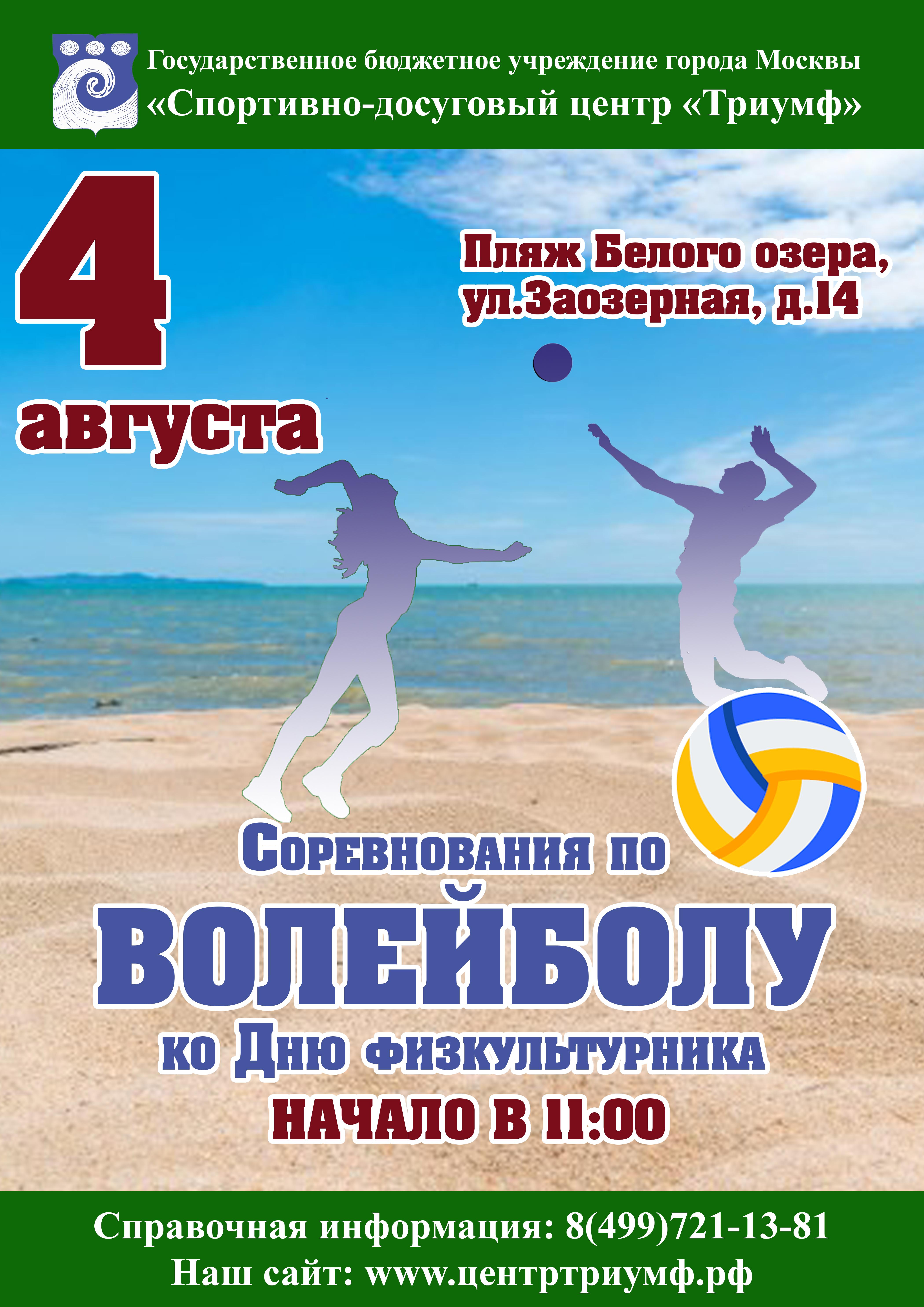 Волейбол - День физкультурника